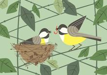 Chickadee Birds In Nest Flat Poster