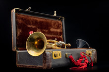 Old Covered Patina Trumpet In ...