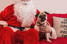 Santa With Cute Pug Dog