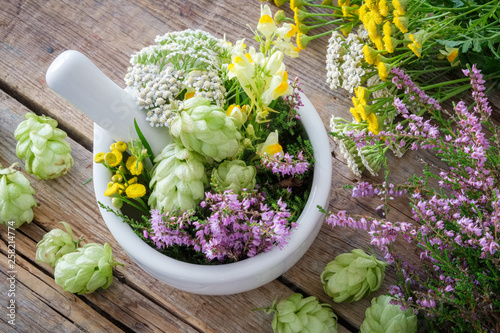 Photo  Mortar of medicinal herbs, healthy plants on wooden table