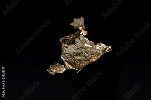 Fotografia  Gold Leaf on Black