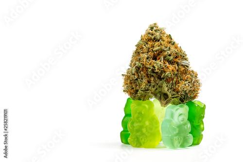 Fotografie, Obraz  marijuana edibles over white