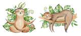 Fototapeta Fototapety na ścianę do pokoju dziecięcego - Sloth bears watercolor set hand drawn illustration with tropical leaves