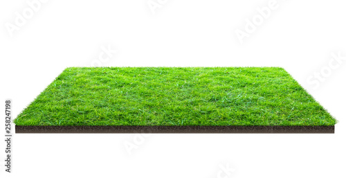 Fotografía  Green grass field isolated on white with clipping path