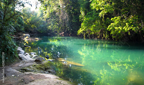 The Rio Grande (not related to the river on the Mexico/US border) flows through beautiful and dense jungle in southern Belize. This idyllic swimming location has a handrail and stepping stones.