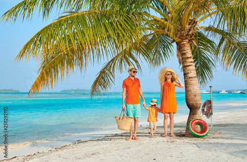Fototapeta Family of three on beach under palm tree obraz