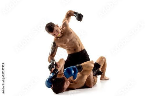 Carta da parati MMA