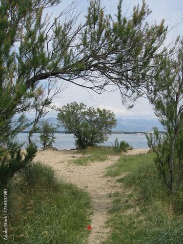 Fototapeta Nin - Dalmatia - Croatia obraz na płótnie