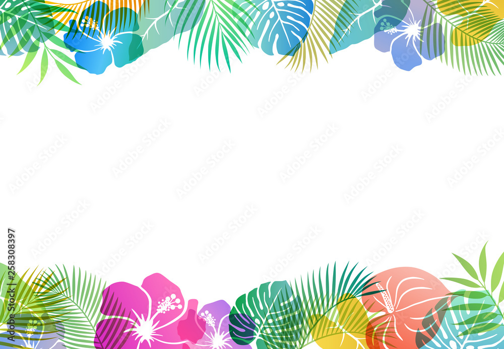 Fototapety, obrazy: Summer tropical image Background material
