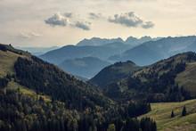 Grüne Berge Mit Nadelbäume