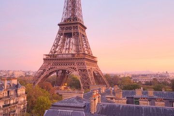 High view of the Eiffel Tower at dawn. Paris. France