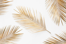Golden Palm Branches On White ...
