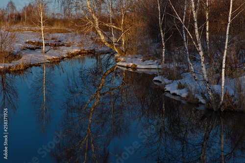 Foto auf Acrylglas Wald im Nebel Russia. Altai territory. Early spring on the Swan lakes near the village of Urozhaine