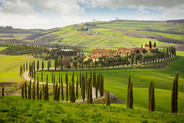 Tuscan hill with row of cypress trees and farmhouses. Tuscan landscape. Italy