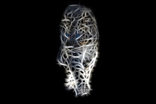 Fractal Image Of A Walking Wild Leopard With Blue Eyes On A Contrasting Black Background
