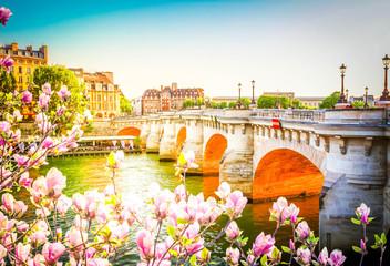 Panel Szklany Paryż Pont Neuf, Paris, France