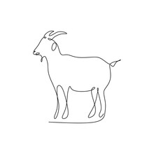 Drawing Continuous Line Of Goat