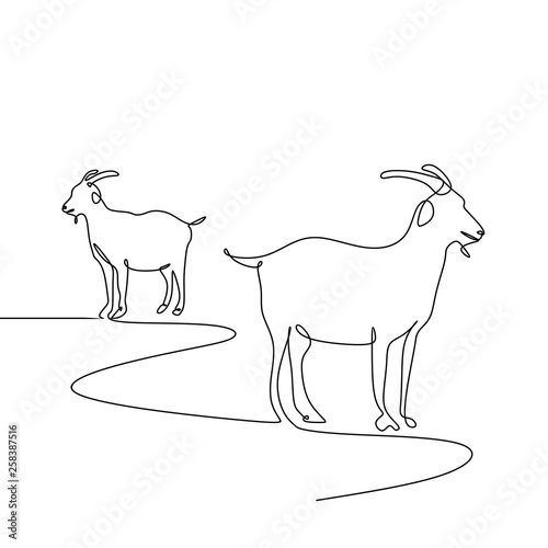 goat one line drawing minimalism style Fototapete