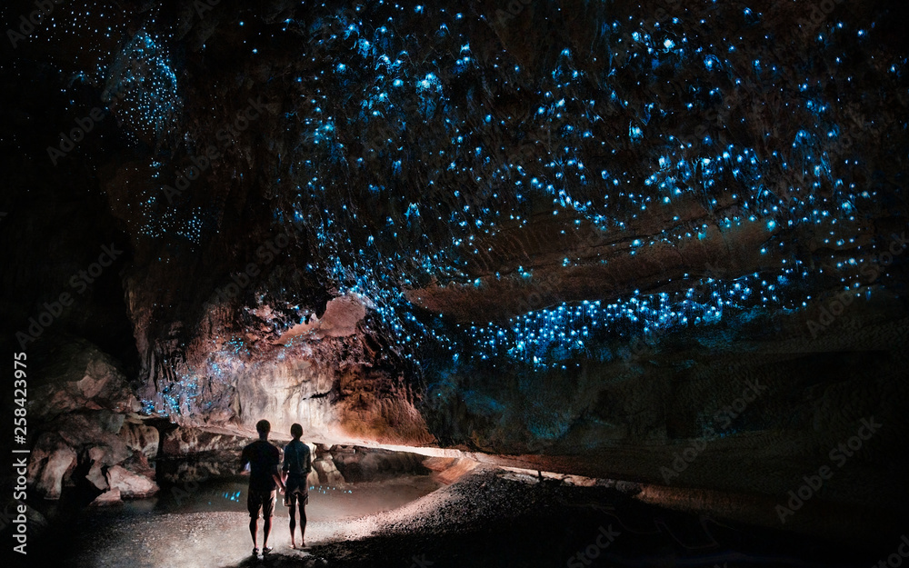 Fototapeta Under a glow worm sky - couple shining a light into Waipu cave filled will glow worms