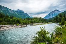 Flathead River Rapids In Glaci...