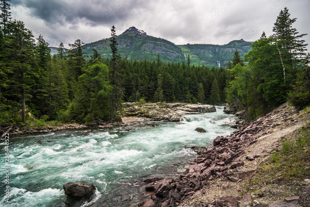 Fototapeta flathead river rapids in glacier national park montana