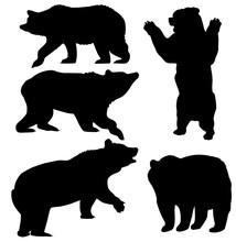 Vector Bear Set
