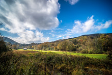 Beautiful Autumn Scenery Along...