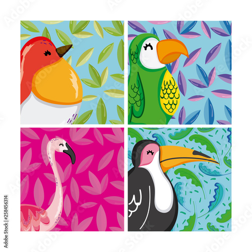 Set of exotic birds - Buy this stock vector and explore