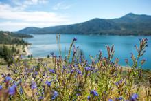 Columbia River Scenes On A Bea...