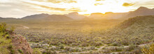 A Panorama Over The Vast Sonoran Desert Of Arizona During Sunset With Mountains In The Background And Natural Vegetation In The For Foreground.