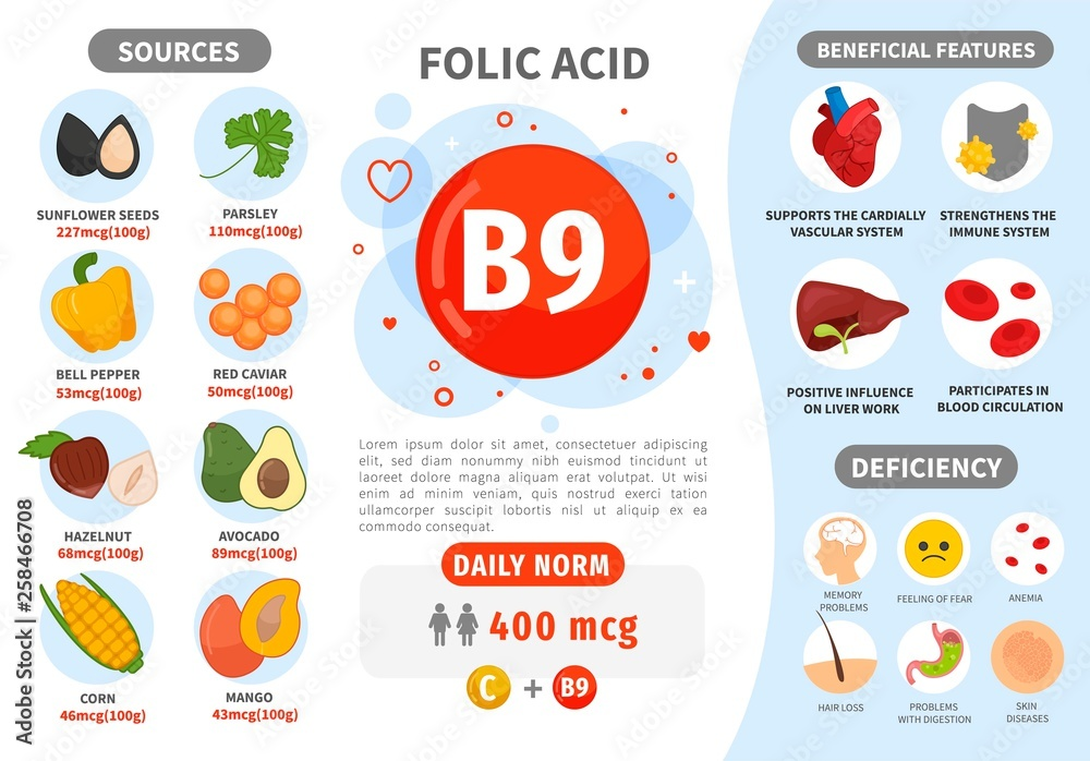 Fototapety, obrazy: Infographics Vitamin B9. Products containing vitamin. Daily norm. Symptoms of deficiency. Vector medical poster.