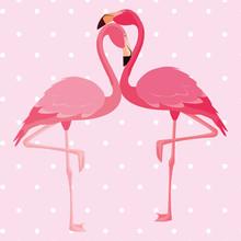 Elegant Flamingo Birds Couple Dotted Background