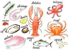 Watercolor Sea Food Menu Illus...