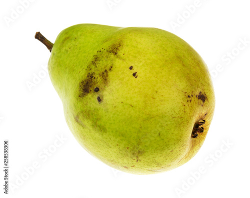 Single green anjou pear isolated on a white background Canvas Print