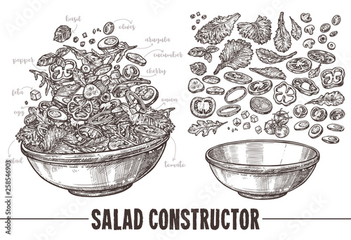 Stampa su Tela Vector monochrome set of sketch elements, components and ingredients for vegetables salat