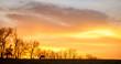 Leinwandbild Motiv Horse on a pasture in Kentucky at sunset