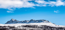 Panorama Of  Long Mountain With Lapland Birch, Much Snow, Sunny Day, Blue Skies And Almost No Clouds. Atoklinten Mountain - Holy Sami People Place,  Hemavan, Tarnaby