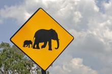 """Elepants Crossing"" Warning Sign"