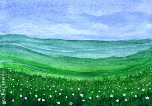 Foto auf AluDibond Grun Green grass field with white flowers in watercolor