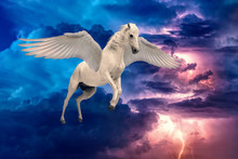 Pegasus Winged Legendary White Horse Flying With Spread Wings
