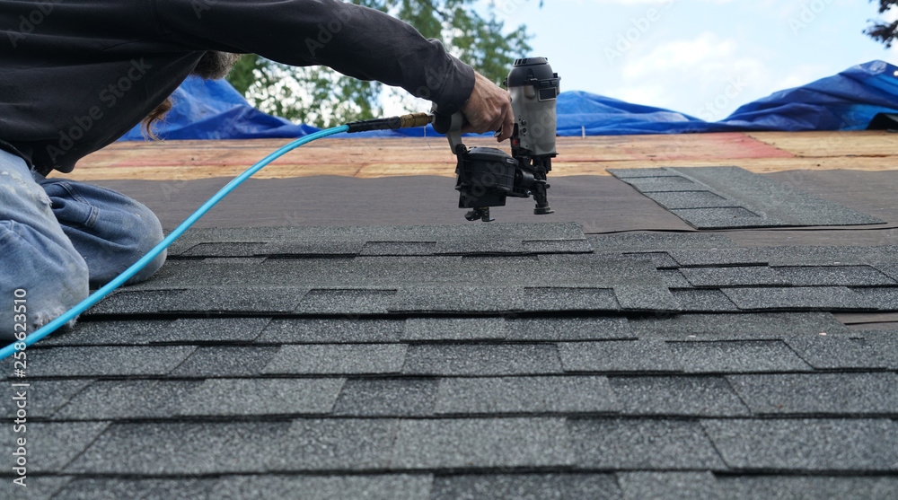 Fototapety, obrazy: handyman using nail gun to install shingle to repair roof