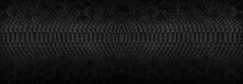 Snake Skin Background. Panoram...