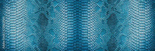 Poster Tissu Snake skin background. Panoramic web banner with copy space.