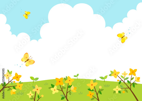 Forsythia flowers with butterflies.Spring background Fototapet