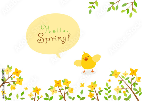 Forsythia flowers with baby chick.Spring background Fototapeta