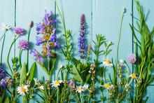Herbal Flowers On Blue Wooden ...