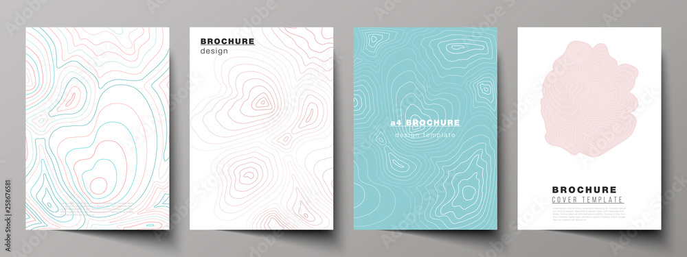Fototapeta The vector illustration of editable layout of A4 format cover mockups design templates for brochure, magazine, flyer, booklet, annual report. Topographic contour map, abstract monochrome background.