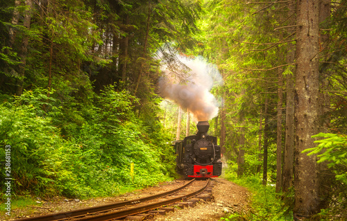 Recess Fitting Railroad Mocanita steam train in forest from Bucovina or Maramures, Romania