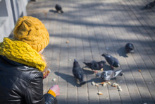 Young Woman Feeding Pigeons In City Park