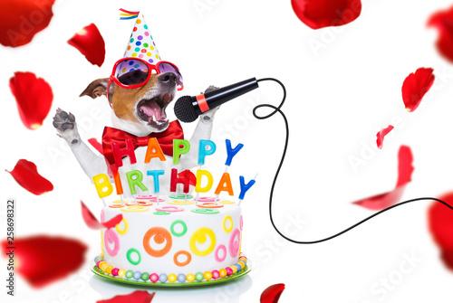Poster Crazy dog happy birthday dog